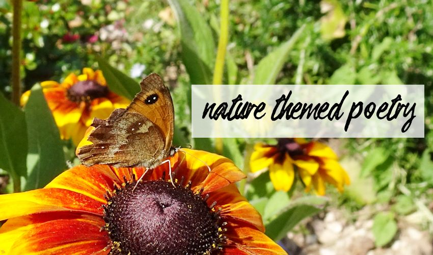 nature themed poetry title image